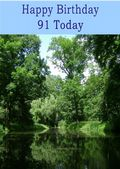 Happy Birthday - 91 Today - Option 2